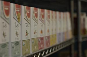 The Main Principles Of Organic Green Tea